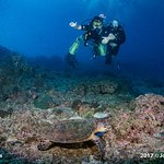 Photo de Sea Fun Divers - Day Trips
