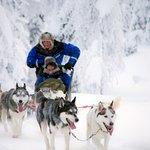 Photo of Salla Reindeer Park