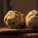 White Truffle (Seasonal)