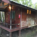 Photo of Nature Lodge Kinabatangan