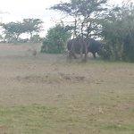 Photo of Olare Mara Kempinski Masai Mara