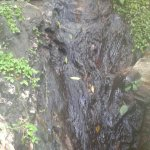 Maracas Falls照片