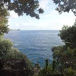 Photo de Aldeia da Fonte Nature Resort