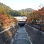 しんぬのびき橋上から眺めた新神戸駅