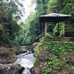 Photo de Gitgit Waterfall