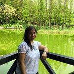 FB_IMG_1509978427859_large.jpg