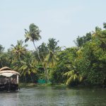 Boating on the Backwaters