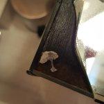Photo of Hotel Crayon by Elegancia