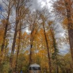 Jackson Hole Campground Picture