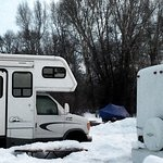 Jackson Hole Campground Bild