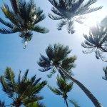 Kenya Bay Beach Hotel Foto