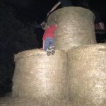 The hay fort.