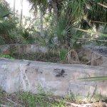 Ruins of Eldora, Florida can still be seen here