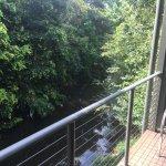 Obi Obi Creek at the back verandah.