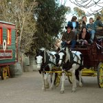 Horse & Buggy Rides from Echuca Historic Port