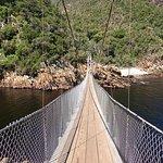 Photo of Storms River Suspension Bridge