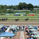 Horse races and a wine and chocolate festival!
