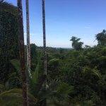 Foto de Jackaroo Treehouse Mission Beach