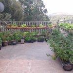 horta do Serrafina...D+++