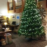 Photo de AmericInn Lodge & Suites Wabasha