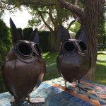 Photo de Birdwoods Gallery
