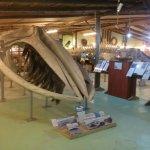 Photo of Museo del Mar