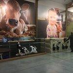 Foto di Tillamook Cheese Factory