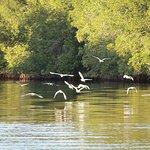 Photo of Juan Venado Island Nature Reserve