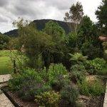 Ribbonwood Retreat Foto