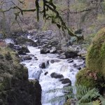 River Braan,Waterfall,The Hermitage,Ossian's hall