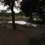 Photo of Motswari Private Game Reserve