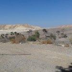 Photo of Rimonim Eilat