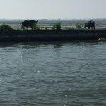 Foto de Vivanta by Taj - Malabar