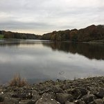 Roundhay Park Bild