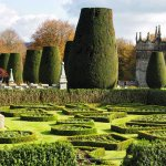 The Parterre and Yew Trees