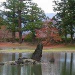 Motsu-ji Temple صورة فوتوغرافية