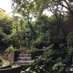 Foto de Parque Nacional Barranca del Cupatitzio