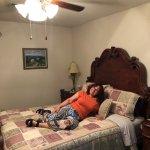 Photo of Sassafras Inn Bed & Breakfast