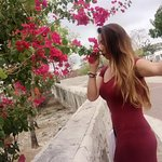 la flores hacen lindo el paisaje