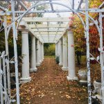 History makes it's way outside - our pergola