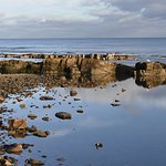 Cellardyke foreshore