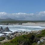 Photo of West Coast National Park