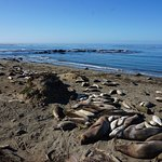 Photo of Piedras Blancas