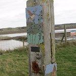 Foto van Rye Harbour Nature Reserve