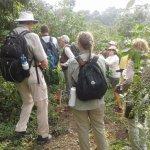 Our clients enjoy the Gorilla Coffee Safari