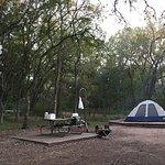 Campsite #46, Grapevine Loop, Oct 2017