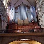 O órgão da Catedral do Bom Pastor