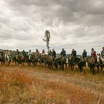Artemis Acres Paint Horse Ranch Foto