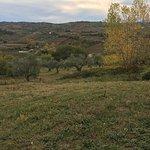 Photo de Agriturismo Le Tre Poiane