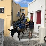 Donkey service to carry luggage up and down the hill